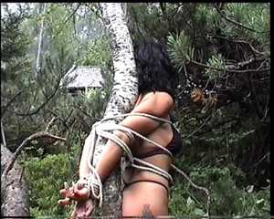 Tied in the forest – Quality Hi8, 720x576